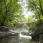 Approach to Seonam-sa Temple 仙巖寺参道 thumbnail