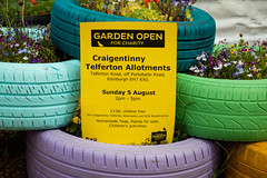 Scotland's Gardens Craigintinney Telferton July 2018 -184 (Philip Gillespie) Tags: edinburgh scotland craigentinny telferton portobello summer gardens park open plants fruit vegetables knitting insects animals trees people men women kids boys girls sky sun clouds colours green yellow blue white black red purple orange rainbow butterflies bees wasp honey pollen water canon 5dsr photography color path walk urban streets sheds plots flags bunting scotlands 2018 tyres bright colourful wet lady birds bugs signs houses