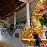 Wat Pongyaeng. วัดโป่งแยง thumbnail