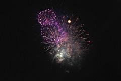 Independence Fireworks (Deepgreen2009) Tags: july independence day fireworks celebration usa newyork sky night display colour gunpowder explosion