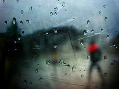 walking between the raindrops (P. Correia) Tags: amsterdam 2017 rain panasonicdmcfz18 pcorreia