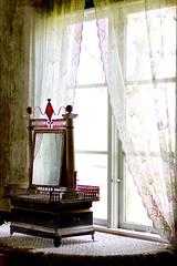Antique mirror (BirgittaSjostedt) Tags: window mirror old antique windowwednesday birgittasjostedt curtain texture ifu ut