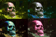 Andy warhol is back - La demeure du chaos (Gui.llau.me) Tags: abode chaos la demeure du saint romain au mont dor crane skull andy warhol france lyon progress four color colorful multi