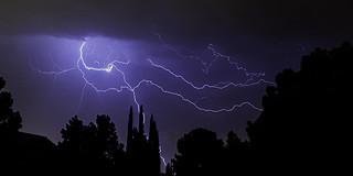 024693763498-102-Lightning in the Trees-2