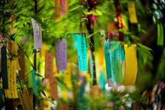 Tanabata (moaan) Tags: kyoto japan jp festival starfestival lunafestival eveningoftheseventh summerstarfestival dof depthoffield focusonforeground selectivefocus bokeh bokehphotography leica leicamp noctilux 50mm f10 noctilux50mmf10 utata 2018 kibuneshrine