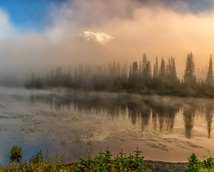 A Misty Morn (Philip Kuntz) Tags: sunrise dawn daybreak sunup reflections mists fog mtrainier volcano reflectionlake washington