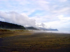 Perspective.... (Sherrianne100) Tags: perspective beach ocean pacificcoast westcoast