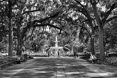 Savannah (ipadzwochris) Tags: fountain southernbelle town trip voyage reise travel bw blackandwhite streetphotography street savannah southcarolina unitedstates america amerika usa