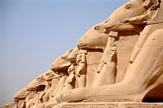 Magical Places and Things- Egypt- Luxor Temple (The Spirit of the World ( On and Off)) Tags: luxor luxortemple guards rams sphinxes row ancient famousguards history egyptianhistory egypt africa middleeast religioussite