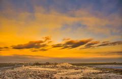 福寶濕地 夕陽 (張麗芬) Tags: 彰化縣 福興鄉 福寶濕地 海 剪影 天空 雲彩 夕陽 風景 taiwan