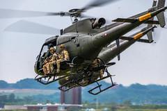 850_0816.jpg (gardhaha) Tags: 2018 aalborgairbase eskadrille724 airtransportwingaalborg danishairshow ekyt eurocopter aal as550fennec royaldanishairforce