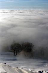 Sea of Clouds (Bephep2010) Tags: 2017 77 alpha bäume landschaft sal50m28 slta77v schnee schweiz sony switzerland wald winter wolken wolkenmeer zug zugerberg clouds forest landscape seaofclouds snow trees weiss white ch