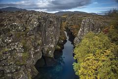 Peningagjá 'Money Gorge' (Sizun Eye) Tags: peningagjá þingvellir iceland gorge moneygorge nature rift tectonic sizuneye nikond750 tamron2470mmf28