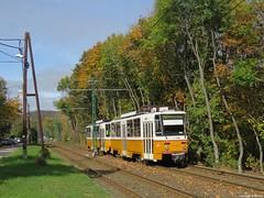 Az 56A villamos az Alsó Völgy utcában (Torontáli Krisztián) Tags: villamos vehicle publictransport outdoor budapest railroad transport tram tramway strassenbahn streetcar