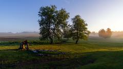 Утро #своифото, #пейзаж, #природа, #утро, #рассвет, #дерево, #натура, #восход, #sunrise, #nature, #tree, #Landscape, #sun, #туман, #лучи, #foggy, (ЛеонидМаксименко) Tags: пейзаж восход утро лучи foggy tree nature landscape природа натура дерево sun рассвет своифото туман sunrise