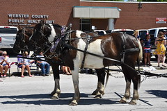 139th Annual 4th of July Parade (Adventurer Dustin Holmes) Tags: 2018 marshfieldmo marshfieldmissouri marshfield missouri event events parade parades outdoor outdoors ozarks july4th 4thofjuly independenceday 139th annual celebration webstercounty midwest webstercountypublichealthunit showmecowboychurch