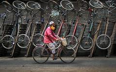 Captivity of wheels [EXPLORED] (Aranya Ehsan) Tags: life street color colors ehsan ehsanul travel bangladesh wheel wheels aranya bicycle
