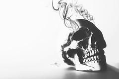 smokin' mad (rockinmonique) Tags: 52in52 201852weekthemechallenge le longexposure highkey skull smoke light shadow spooky mono monochrome bw blackandwhite composite moniquewphotography canon canont6s tamron tamron45mm copyright2018moniquewphotography
