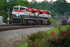 FECSouthern (weshendrix) Tags: ns norfolk southern austell georgia ga atlanta terminal train railfan railfanning railroad railroading rails freight engine locomotive diesel vehicle fec florida east coast sd70m2 emd flowers roses track outdoor lease unit