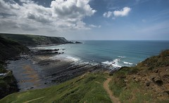 Marsland  Beach.... (johngregory250666) Tags: a photo seen in images england coast coastal path south west trail devon atlantic heartland point nikon d5200 nikkor 1024 summer june uk surf waves green blue water sky country landscape orange sea bay bluff cliff ocean grass rock beach animal people photoadd boscastle harbour mountainside flora floral port forest road tree