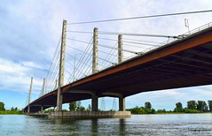 PItt River Bridge (SonjaPetersonPh♡tography) Tags: portcoquitlam pittriver river nikon nikond5300 bc britishcolumbia canada bridge pittriverbridge riverfront riverbank span lougheedhighway pittmeadows traboulaypocotrail landscapes viewpoint view