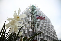 this one's for trump (Andrew Eadie) Tags: american embassy london nine elms vauxhall diplomatic mission architecture kieran timberlake crystalline cube canonefs1585mmf3556isusm andreweadie