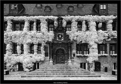 Harz, Quedlinburg, Rathaus (Dierk Topp) Tags: bw canontse417mm ir sonya7r sonya7rir architecture harz infrared infrarot monochrom quedlinburg sw sony tiltshift
