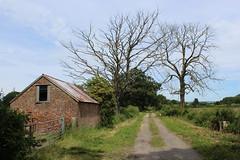 Toft Ings Lane (Walruscharmer) Tags: track deadtrees brickbuilding gate hedgerows easingwold valeofyork northyorkshire yorkshire england