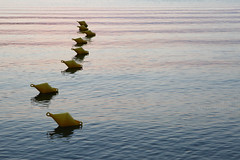 Buoy drift (Elios.k) Tags: horizontal outdoors nopeople calm serene water buoy line perspective row yellow wave sea reflection sunset sunsetcolour dusk abstract colour color travel travelling august 2017 summer vacation canon 5dmkii camera photography milina μηλίνα πήλιο pelion thessaly pagasiticbay greece ελλάδα