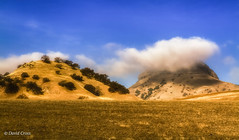 A Cloudy Knoll (buffdawgus) Tags: rollinghills landscape sutterbuttes lightroom5 hillside californiacentralvalley hills canon1585mmusmis california morning northerncalifornia canon7d oaktree winter suttercounty sacramentovalley topazsw