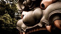 Namba Yasaka Shrine (Gerald Ow) Tags: namba yasaka shrine japan shinto kyoto geraldow sony ilce7rm2 fe 2470mm f28 gm a7rii a7rmk2 a7r2 gmaster 神道 日本 lion 難波八坂神社 osaka 大阪 獅子舞台 worship