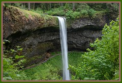 /^/ South Falls Vista \^\ (Wolverine09J ~ 1.7 Million Views) Tags: midnightandoregonjun18 waterfall southfalls silverfallsstatepark landscape seasonal nature flora rockwall serene batslair spiritofphotography thebeautyofnature musictomyeyes~l1