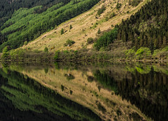 Beautiful Loch Eck - May 2018 (GOR44Photographic@Gmail.com) Tags: loch eck mirror reflection gor44 green trees water spring argyll cowal scotland olympus omdem5 1240mmf28
