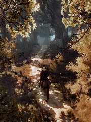 (U K I Y O) Tags: the wild hunt witcher 3 game gaming screenshot screenarchery mood tones pc reshade ansel