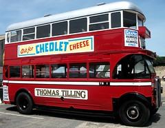 Thomas Tilling AEC Regent 6098 Brooklands 24/06/18. (Ledlon89) Tags: aec bus buses london transport lt lte lptb tillings tilling londonbus londonbuses londontransport vintagebuses weybridge brooklands londonbusmuseum lbpt