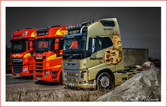 Trucking Gold (Deek Wilson) Tags: bigttruckrun volvo daf scania truck gold fh16volvo truckshow northernireland normanemerson manfreight