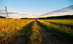 Evening fields (Joni Mansikka) Tags: summer nature outdoor fields landscape path shed sky light colours rural paimio suomi finland atx280afpro tokinaaf2880mmf28