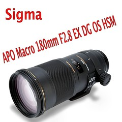 Sigma APO Macro 180mm F2.8 EX DG OS HSM (Oliver Leveritt) Tags: macro 180mm sigmaapomacro180mmf28exdgoshsm sigma180mmmacro