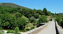 Mialet (Gard), Pont des Camisards sur le gardon de Saint-Jean, à droite le vieux village (gunger30) Tags: mialet gard cévennes languedocroussillon occitanie france 2018 pontdescamisards pont paysage