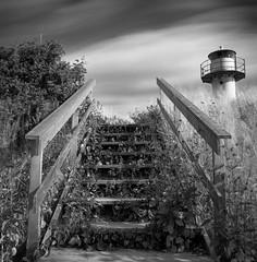 Stairs... (Karl Johan) Tags: fujineopanacros fuji neopan acros 6x6 analog epsonv600 epson v600 ishootfilm limhamn skåne sweden sverige malmö hasselblad 500cm mf mediumformat outdoor film blackandwhite blackwhite rodinal bw bwfp monochrome classicblackwhite distagon6056 distagon 6056 120 longexposure stairs lighthouse