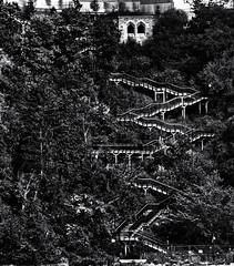 Stairway 2   # 86 .... ; (c)rebfoto (rebfoto ...) Tags: forest wood tree monochrome rebfoto stairway stairs blackandwhite