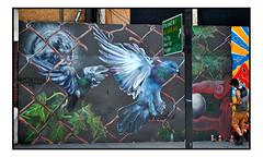 STREET ART by NETHER410 (StockCarPete) Tags: nether410 streetart londonstreetart urbanart graffiti workinprocess wip shoreditchart london uk birdart pigeons spraycanart spraycans
