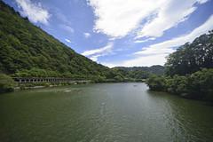 _DSC6311 (tohru_nishimura) Tags: nikond610 sigma12244556 nikon sagamiko kanagawa japan