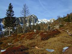 Krstenica alpine meadow (Vid Pogacnik) Tags: slovenija slovenia julianalps bohinj outdoors hiking landscape krstenica ogradi alpinemadow