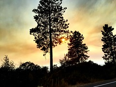 Wildfire Smoke in Oregon! (LouLou'sLoves) Tags: car clouds pines trees oregon sunset forest fire smoke