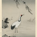 A traditional portrait of a beautiful Japanese crane by Kano Motonobu (1476-1559). Digitally enhanced from our own antique wood block print.