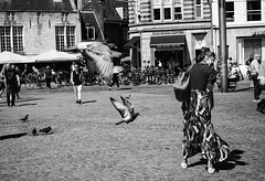 Attacking birds (weerwolfje) Tags: amsterdam pigeons birds dam street streetphotography bnw bw blackandwhite olympus omd mark ii woman