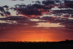 Manitoba Sunset (spyc-red) Tags: sunset manitoba prairies canada sky clouds color landscape