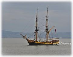 """Phoenix"" Anchored of Moville on Lough Foyle. (willieguildea) Tags: ship boat tallship vessel lough loughfoyle river donegal ireland eire ulster water waterscape nikon coast coastal coastalireland"