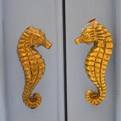 Golden Seahorse [Valletta - 28 April 2018] (Doc. Ing.) Tags: 2018 malta square ilbeltvalletta lavalletta valletta twins seahorse doorhandle door doordetail gold capital